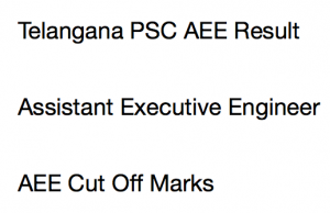 TSPSC AEE Result 2020 Cut Off Marks Merit List Assistant Executive Engineer